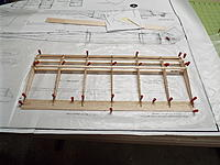 Name: DSCF7133.jpg