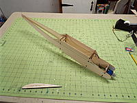 Name: DSCF7135.jpg