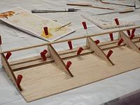 Name: sDSCF8729.JPG