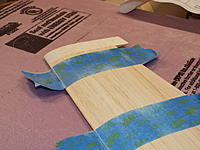 Name: DSCF9219.jpg