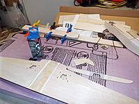 Name: DSCF9257.jpg