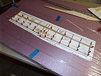Name: DSCF5445.jpg