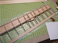 Name: DSCF5681.jpg