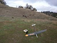 Name: Aerial dlg and horses_20151207_111706.jpg Views: 132 Size: 1.10 MB Description: