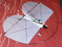Name: P1220094.jpg Views: 114 Size: 64.8 KB Description: covering is cheap white plastic bag material..this version is the v2... its COG is at 70mm back from the LE of the wing... where it flies great