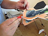 Name: IMG_1146.jpg