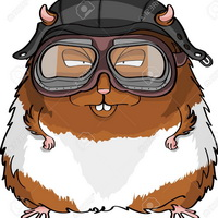 Name: 15649500-Cute-little-cartoon-hamster-in-a-helmet-and-goggles-with-sleepy-eyes-Stock-Photo.jpg