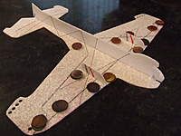 Name: Micro Afriel 005.jpg