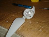 Name: DSC00696.jpg