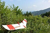 Name: DSC_1246m.jpg Views: 70 Size: 311.5 KB Description: Xeno, glider version
