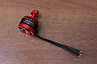 Name: ariaAQ - Racerstar BR2006 2400kv IMG_1963.jpg
