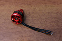 Name: ariaAQ - Racerstar BR2006 2400kv IMG_1964.jpg