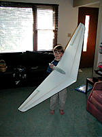 Name: flying wing molded.jpg