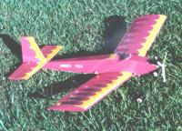 Name: BEETWEEN.JPG Views: 959 Size: 81.2 KB Description: Randy Randolph designed BEEtween 1/2a plane