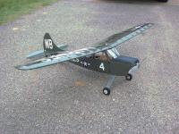 Name: myL19a.jpg