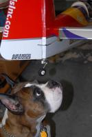Name: RAL_2050.jpg