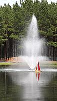 Name: Nivana in Oakboro NC 002.jpg