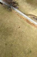 Name: DSC03872.jpg Views: 346 Size: 133.2 KB Description: Taken from Easy Glider