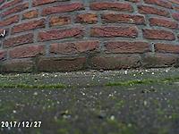 Name: PICT0016ps.jpg Views: 212 Size: 276.8 KB Description:
