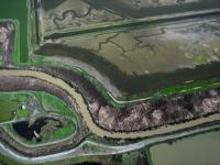 Name: b4.jpg