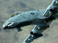 Name: A-10 close-up.jpg