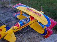 Name: RC Flying 10-25-09 005.JPG