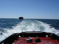 Name: DSC03887.jpg