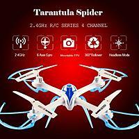 Name: 1452100504053016731.jpg Views: 20 Size: 37.0 KB Description: Tarantula