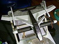 Name: SS850971.jpg