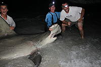 Name: IMG0304.jpg