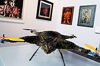 Name: flying-cat-2-500x327.jpg Views: 27 Size: 38.9 KB Description: