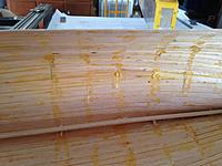 Name: IMG_2012.JPG