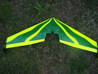 Name: IM002828.jpg Views: 208 Size: 144.2 KB Description: 54LGT, never saw much airtime as the batts were pricey at the time, I slowly stripped the parts.......