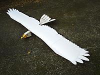 Name: vulture.jpg Views: 135 Size: 232.4 KB Description: