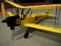 Name: tiger-moth-complete-medium.jpg