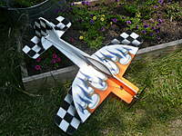 Name: WMParkflyers Yak 55.jpg