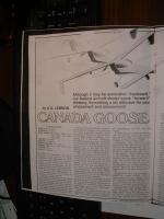 Name: 100_FUJI-DSCF0005_DSCF0005.jpg Views: 334 Size: 83.4 KB Description: Lennon's Canada Goose