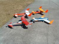 Name: 100_FUJI-DSCF0023_DSCF0023.jpg Views: 316 Size: 133.8 KB Description: G1 red yellow first design. G2 red white Ga. Goose, Egret blue white, G3 silver red