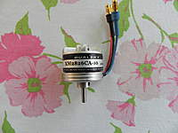 Name: DSCN0818.jpg