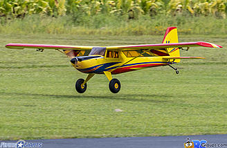 Drop the flaps and the Timber 110 slows down great for landings.