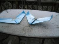 Name: jarbear-wing.jpg
