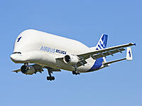 Name: AIRBUS-Beluga1-970-04.jpg