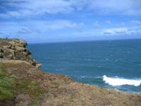 Name: IMG_7062.jpg Views: 147 Size: 86.4 KB Description: The wind's blown'
