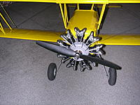 Name: DSCN4436.jpg