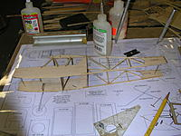 Name: DSCN5096.JPG