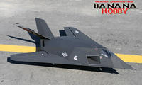 Name: F-117.jpg
