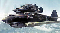 Name: P40-warhawksformation.jpg