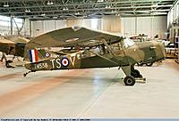 Name: Auster2.jpg
