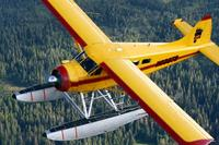 Name: beavercharter.jpg Views: 376 Size: 27.8 KB Description: no corrugations on the ailerons
