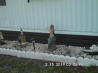 Name: SANY4969 (2).JPG Views: 1 Size: 5.18 MB Description: